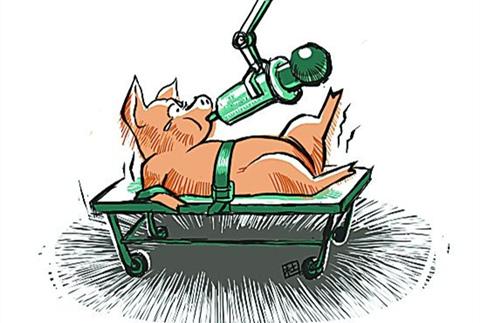 为什么要用饲料添加剂,兽药该怎么用?看专家怎么说
