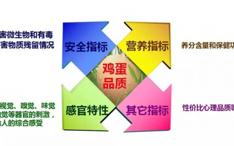 徐桂云:评价蛋品质量的主要因素