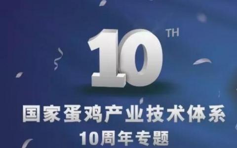 """坚持,终将美好;沉淀,方得升华 —— """"中国蛋鸡""""期待下一个十年"""