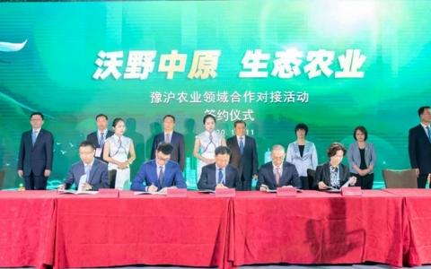 河南省农业农村厅与拼多多战略签约,开启沪豫农业合作新篇章