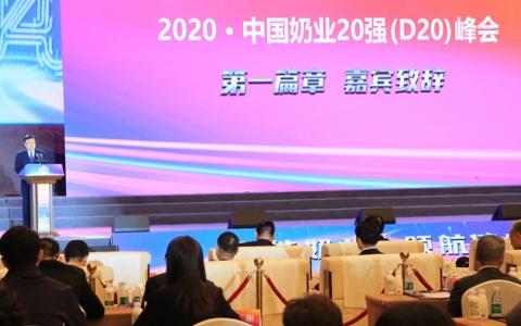 2020中国奶业20强(D20)峰会在河北召开