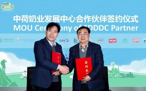 SDDDC再添新成员,国内一流牛奶包装公司——碧海牵手中荷奶业发展中心