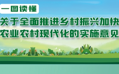 一图读懂:关于全面推进乡村振兴加快农业农村现代化的实施意见