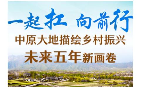 中原大地描绘乡村振兴未来五年新画卷